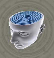 The Science behind REM Sleep Behavior Disorder